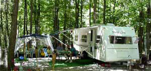 Camping site at Goose Bay Campground