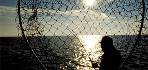 photo of a fisherman and net