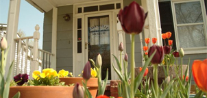 House with pots of tulips