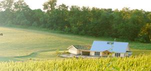 Farm and vineyard