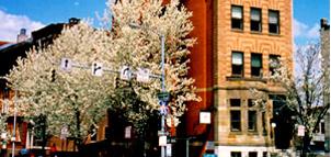 Biddle Street Inn