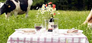 Table set in a pasture