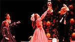 Maryland Regional Ballet's Nutcracker