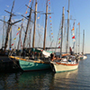 Tall Ships on the Choptank