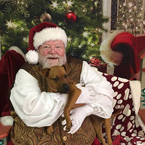 Photo of Santa holding a puppy