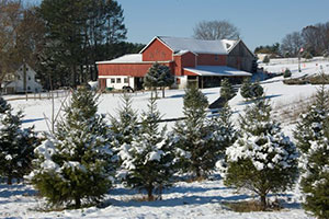 Photo showing Applewood Farm in winter