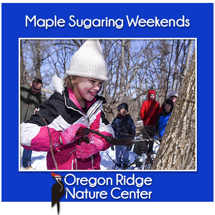 Maple Sugaring Weekends flyer