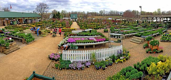 Homestead Gardens