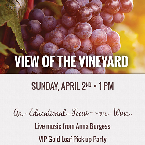 View of the Vineyard flyer