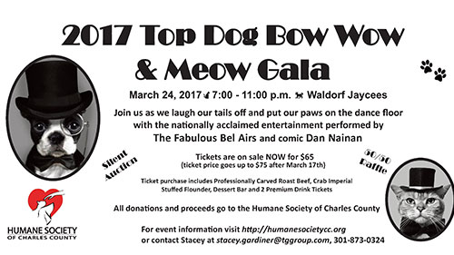 Top Dog Bow Wow & Meow Gala flyer