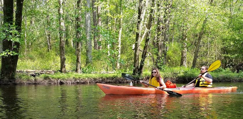 Kayaking on the Tuckahoe River