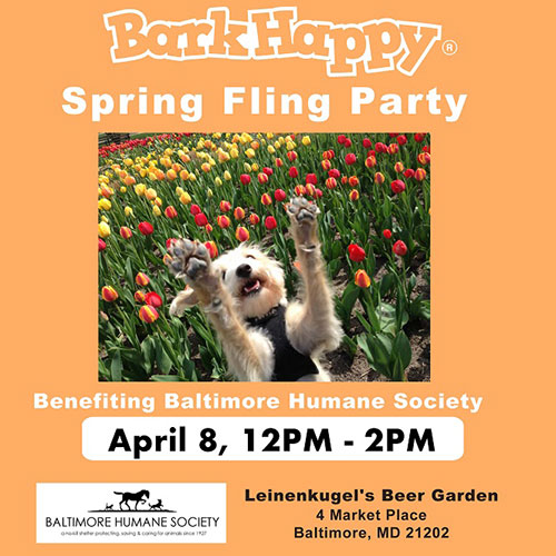 BarkHappy Spring Fling Party flyer