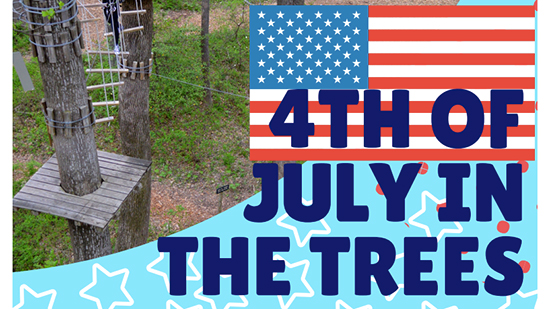 4th of July in the Trees poster