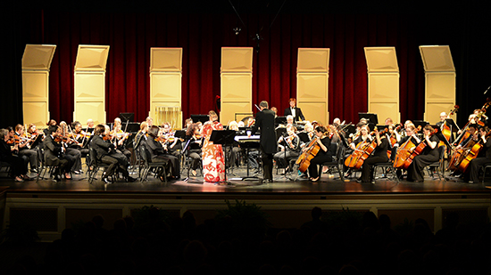 Salisbury Symphony Orchestra performs on-stage