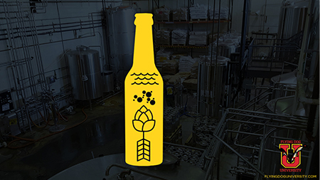 Beer 401 with beer bottle graphic