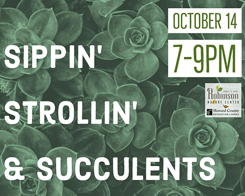 Sippin' Strollin' & Succulents poster