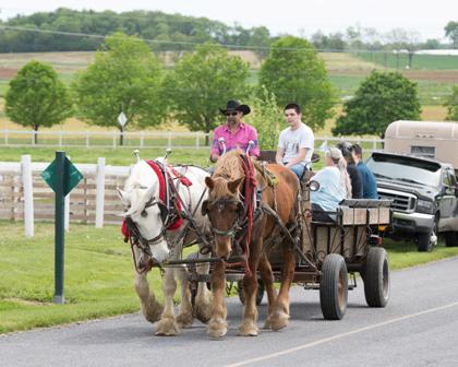A Wagon Ride at STAR Equestrian Center