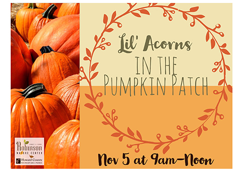 Lil' Acorns in the Pumpkin Patch poster