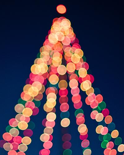 Lights by the Lake Christmas Tree