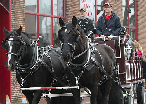 Carriage Ride near Baker Park