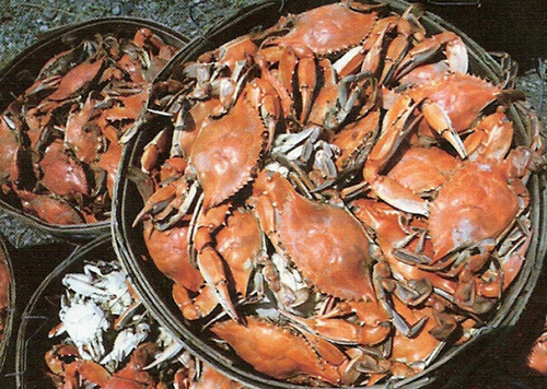 Baskets of all you can eat steamed crabs.