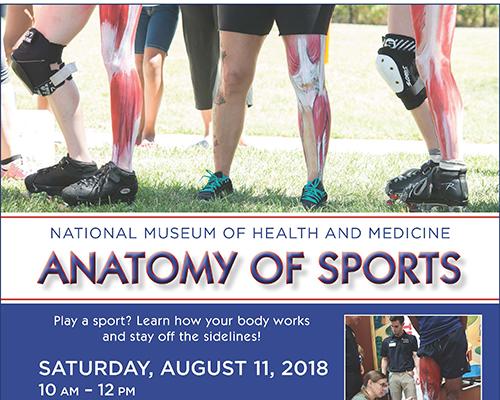 Anatomy of Sports flyer
