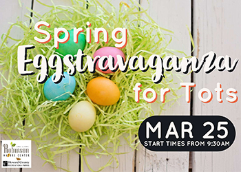 Spring Eggstravaganza for Tots