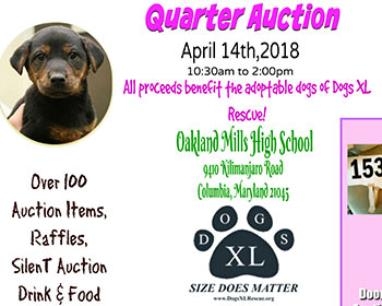 Quarter Auction Flyer