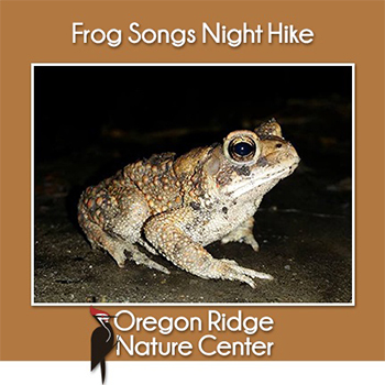 Frog Songs Night Hike Poster