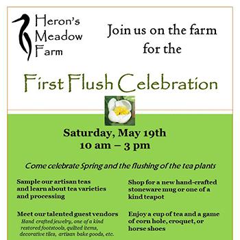 First Flush Event