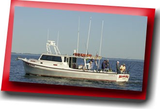 The Brawler II charters fishing trips in the mid-Bay area.