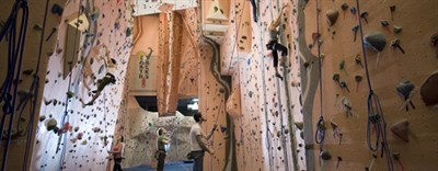 Climbers climbing interior Earth Treks' walls.