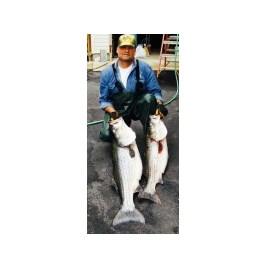 Brian Matthews, Fishing & Hunting Guide.
