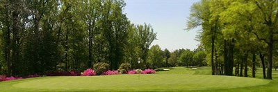 View of a green and fairway at Hillendale Country Club.