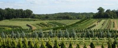 Maryland Agricultural & Farm Park