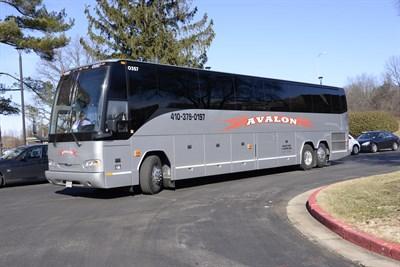 Avalon Tour & Charter