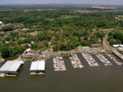 Aerial view of marina.