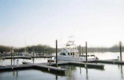 Queen Anne Marina