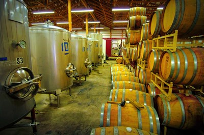 St. Michaels Winery production row