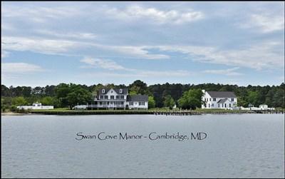 Swan Cove Manor