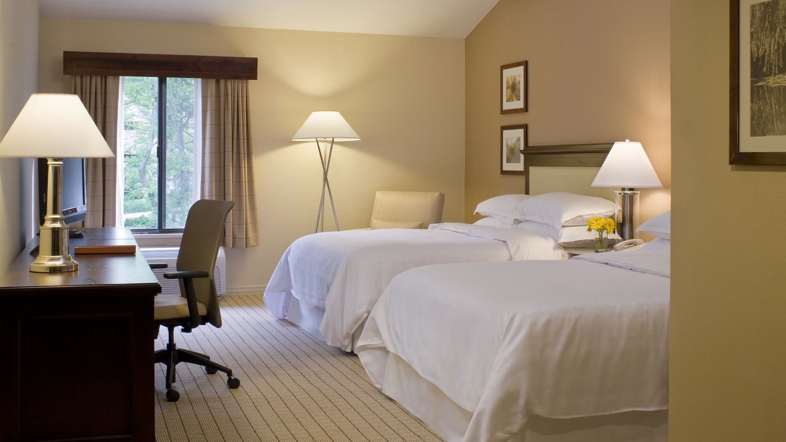 Sheraton-Columbia Town Center Hotel double guest room
