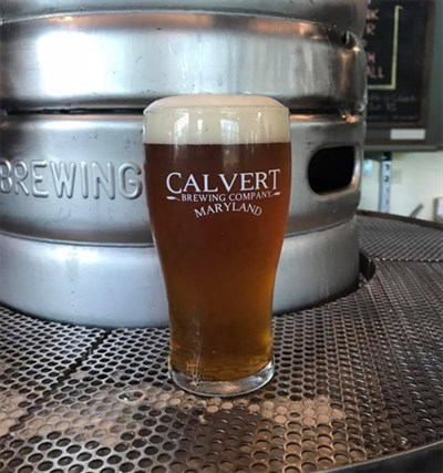 Glass of beer at Calvert Brewing