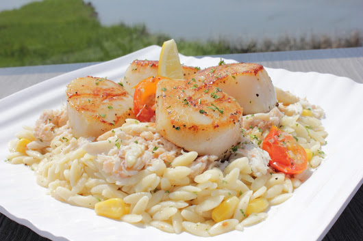 Seafood scallops