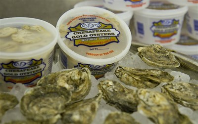 Packaged Oysters