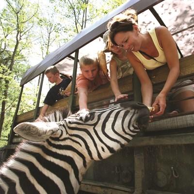 Photo Credit: Catoctin Wildlife Preserve & Zoo
