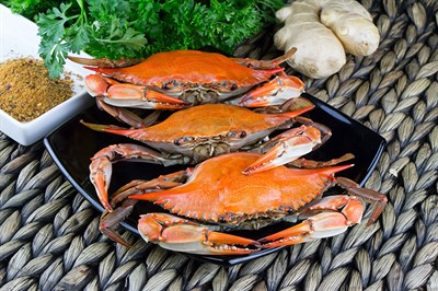Hard-shell crabs