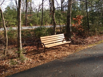 Bench on South Island Trail