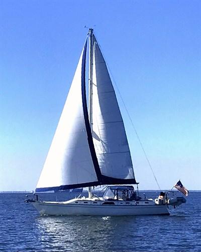 Photo Credit: Blue Crab Chesapeake Charters