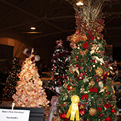 Photo of Festival of Trees in Garrett County