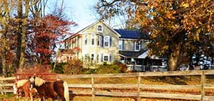 Fairwinds Farm B&B